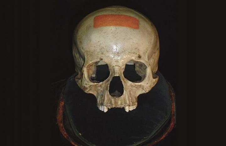 Zaranua-Skull-Head